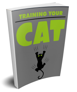 Training Your Cat eBook