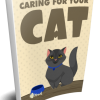 Caring For Your Cat eBook