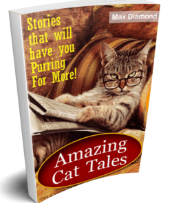 Amazing Cat Tales eBook