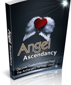 Angel Ascendancy eBook