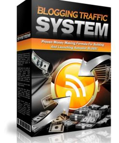 Blogging Traffic System eBook