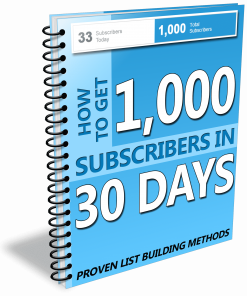 1000 Subscribers in 30 Days eBook
